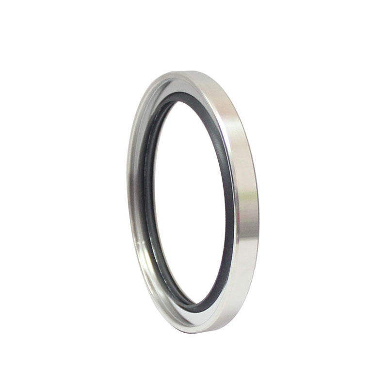 B type-Double Lip Stainless Steel PTFE Oil Seals