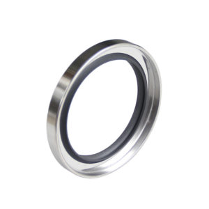 C type-Double lip Stainless Steel PTFE Rotary Oil Seals
