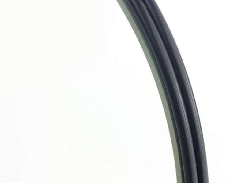 DPE - Hydraulic PTFE Double Wiper Dust Seals-05
