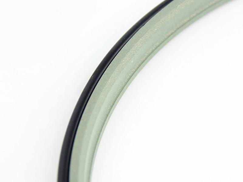 DPE - Hydraulic PTFE Double Wiper Dust Seals-07