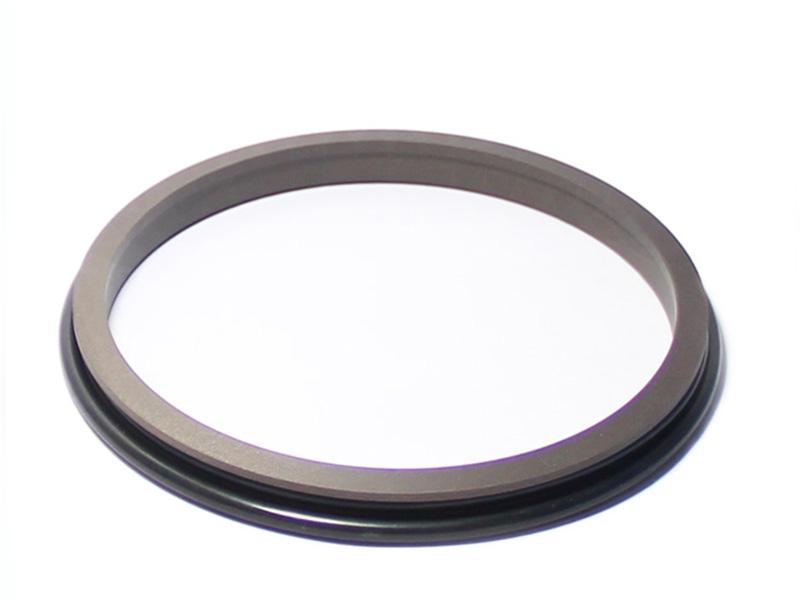 DPR-Cylinder Wiper Ring Dustproof Scraper Seal-detail-05