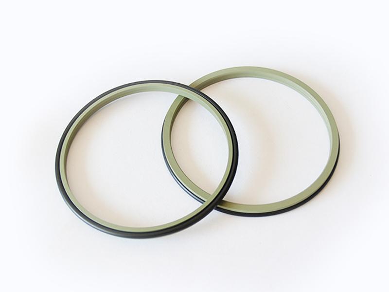 DSZL - Hydraulic PTFE Dust Wiper Seals-detail-01