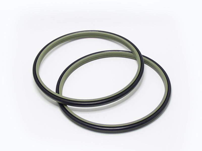 DSZL - Hydraulic PTFE Dust Wiper Seals-detail-02