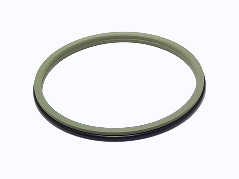 DSZL - Hydraulic PTFE Dust Wiper Seals-detail-03