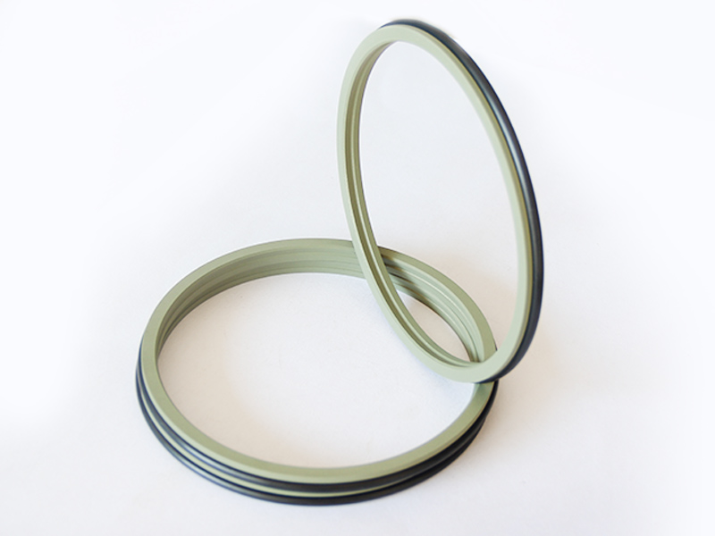 DSZL - Hydraulic PTFE Dust Wiper Seals-detail-04