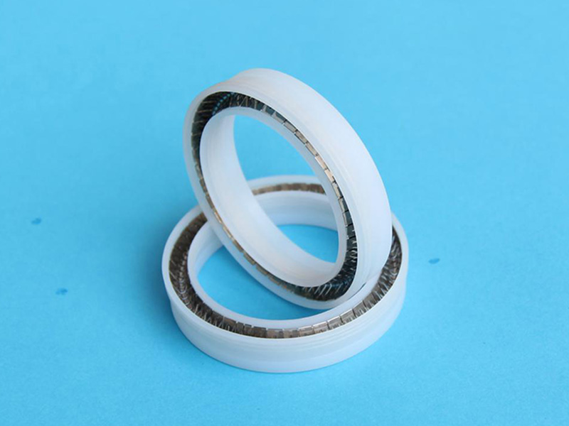 PTA-Custom Elgiloy Helical Spring Energized PTFE Seal-detail-01