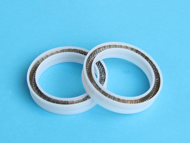 PTA-Custom Elgiloy Helical Spring Energized PTFE Seal-detail-02