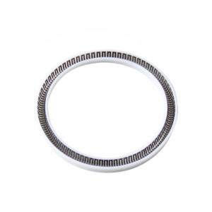 PTB-Custom Spring Energized PTFE Seal