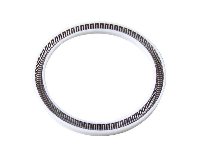 PTB-Custom Spring Energized PTFE Seal-detail-01