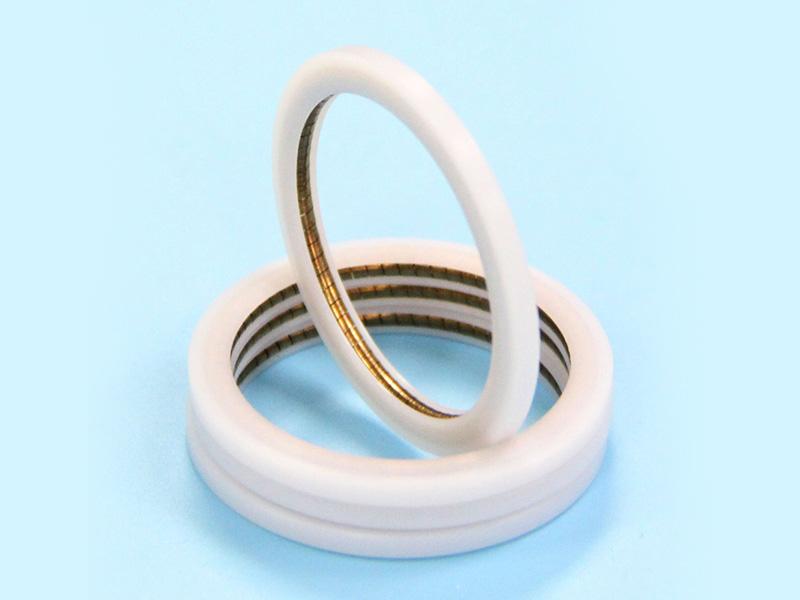 PTC-Internal Face Spring Energized PTFE seal-detail-02