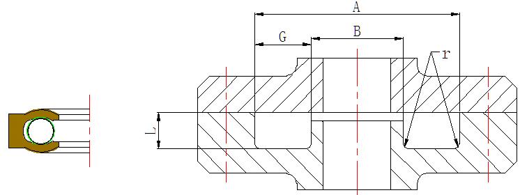 PTC-Internal Face Spring Energized PTFE seal-detail-04