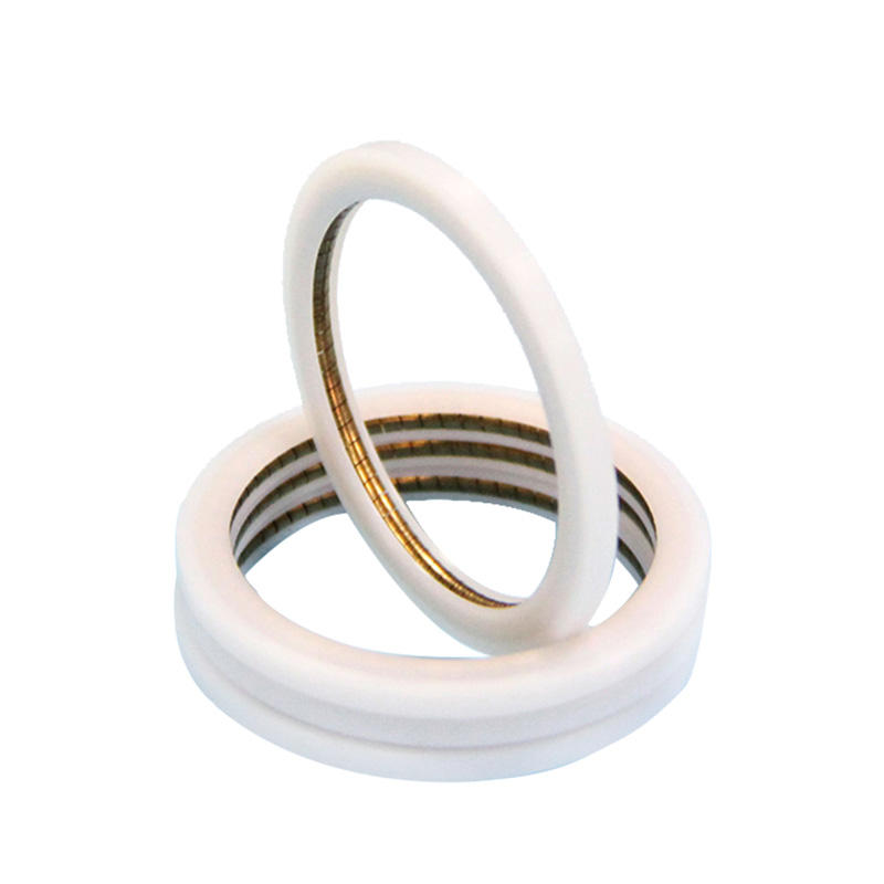 PTC-Internal Face Spring Energized PTFE seal