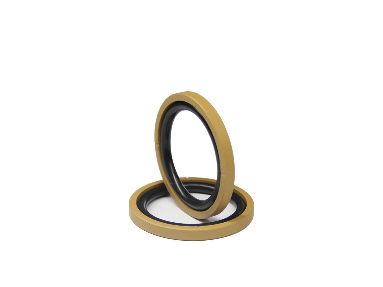 DSH-Piston Seal Design | Piston Seal Bronze Filled PTFE Glyd Ring-5