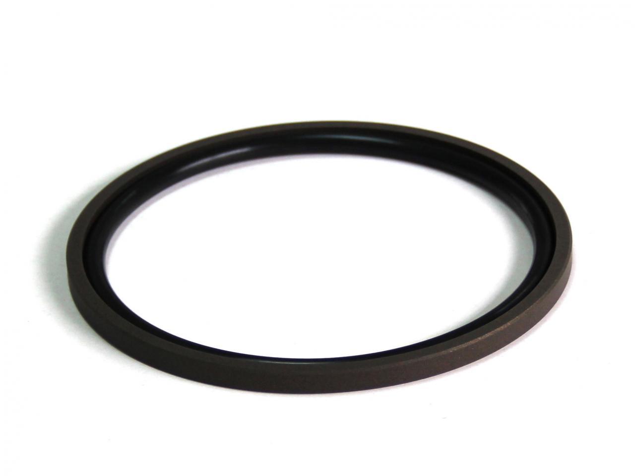 DSH-Piston Seal Design | Piston Seal Bronze Filled PTFE Glyd Ring-6