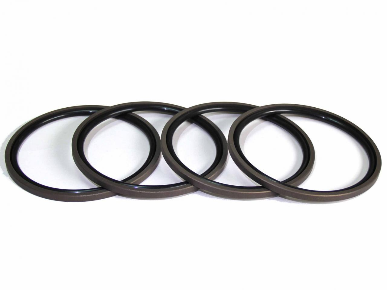 DSH-Piston Seal Design | Piston Seal Bronze Filled PTFE Glyd Ring-8