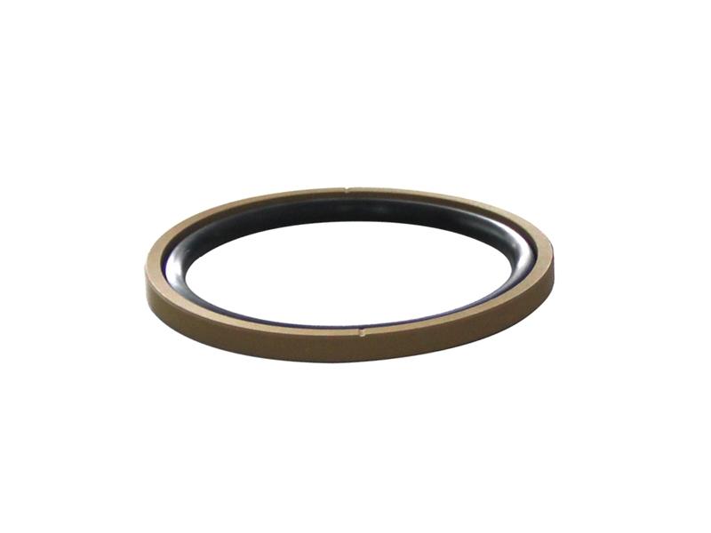 DSH-Piston Seal Design | Piston Seal Bronze Filled PTFE Glyd Ring-10