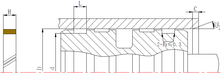 DSH-Professional Piston Seal Design Hydraulic Cylinder Piston Seals-4